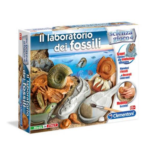 laboratorio-fossili